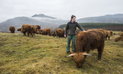 "Katrina Kennedy pictured with cattle on the family farm in Highland Perthshire. Katrina was one of the farmers who supported QMS's recent ""Know Your Beef"" campaign."