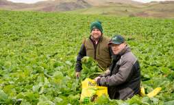 Andrew Marchant, Nithsdale monitor farmer, with facilitator Rhidian Jones with Clonhie farm's bumper crop of kale