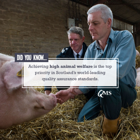 Achieving high animal welfare is the top priority