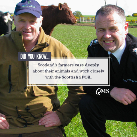 Scottish farmers work closely with the Scottish SPCA